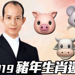 蘇民峰2019|豬年生肖運程(豬、鼠、牛篇)