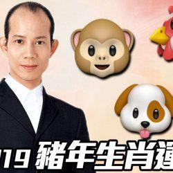 【#生活話題】蘇民峰2019|豬年生肖運程(猴、雞、狗篇)